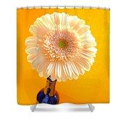 1529-002 Shower Curtain
