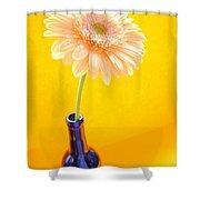 1533-001 Shower Curtain
