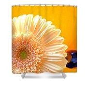 1535-001 Shower Curtain
