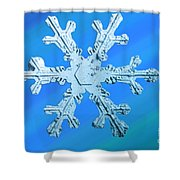 Snow Crystal Shower Curtain
