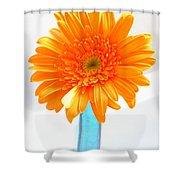 1611-002 Shower Curtain