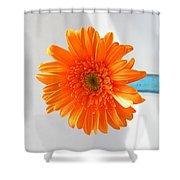 1612 Shower Curtain