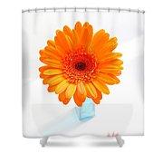 1620c-001 Shower Curtain