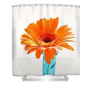 1623c Shower Curtain