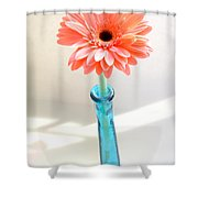 1635-002 Shower Curtain