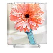 1636-002 Shower Curtain