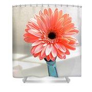 1637c-001 Shower Curtain