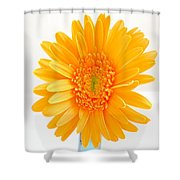 1695c-002 Shower Curtain