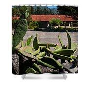 Gardens In Carmel Monastery Shower Curtain