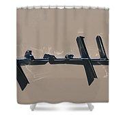 1929 Desoto Firelite Convertable Shower Curtain