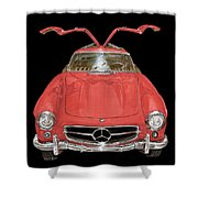 300 S L Gull Wing  Shower Curtain