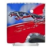 1961 Jaguar Kougar Hood Ornament 2 Shower Curtain
