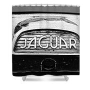 1963 Jaguar Back Up Light Shower Curtain