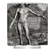18th Century Anatomical Engraving Shower Curtain