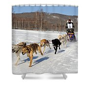 2010 Limited North American Sled Dog Race Shower Curtain