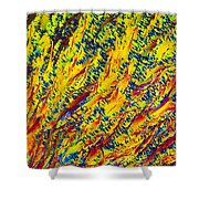 Adenosine Triphosphate Shower Curtain by Michael W. Davidson