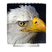 An Eye On You Shower Curtain