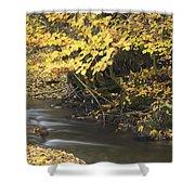 Autumn Flow Shower Curtain