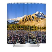 Bow Lake And Crowfoot Mountain Shower Curtain