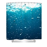 Bubbles Underwater Shower Curtain