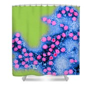 Coxsackie B4 Virus, Tem Shower Curtain