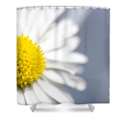 Daisy Flower Shower Curtain