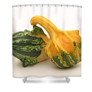 Decorative Squash Shower Curtain