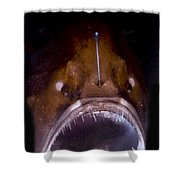 Deep Sea Angler Shower Curtain