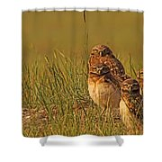 Digitally Enhanced Image With Painterly Shower Curtain