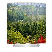 Fall Forest Rain Storm Shower Curtain