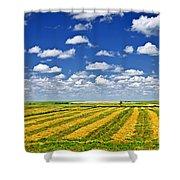 Farm Field At Harvest In Saskatchewan Shower Curtain by Elena Elisseeva