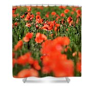 Field Of Poppies. Shower Curtain