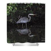 Great Heron Shower Curtain