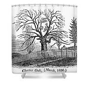 Hartford: Charter Oak Shower Curtain