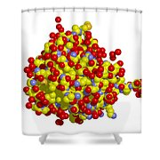 Heat Shock Protein 90 Shower Curtain by Ted Kinsman