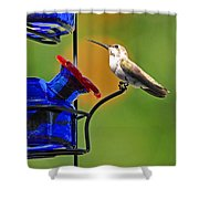 Hummer At The Feeder Shower Curtain