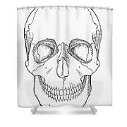 Illustration Of Anterior Skull Shower Curtain