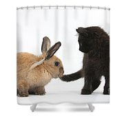 Kitten And Young Rabbit Shower Curtain