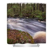 Liesijoki Shower Curtain