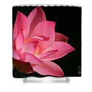 Lotus Diva Shower Curtain