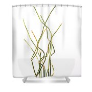 Ma Huang Shower Curtain