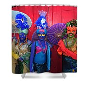 Mermaid Parade 2011 Coney Island Shower Curtain