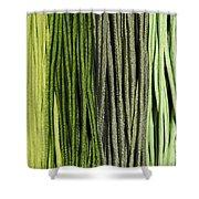Multi-colored Striped Fabrics Shower Curtain