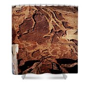 Natural Carvings Shower Curtain