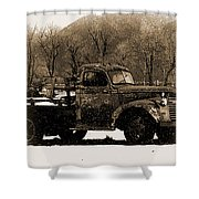 New Mexico Winter Shower Curtain