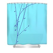 Omega Particle, 3rd Observation Shower Curtain