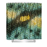Parsons Chameleon Skin Shower Curtain