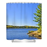 Pine Tree At Lake Shore Shower Curtain