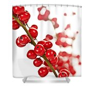 Red Christmas Berries Shower Curtain by Elena Elisseeva
