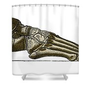 Right Foot Shower Curtain